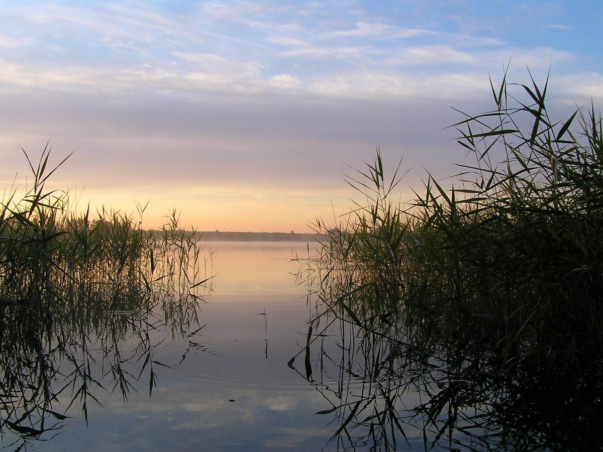 Утро на рыбалке (продолжение). Автор фото: Константин Вишератин