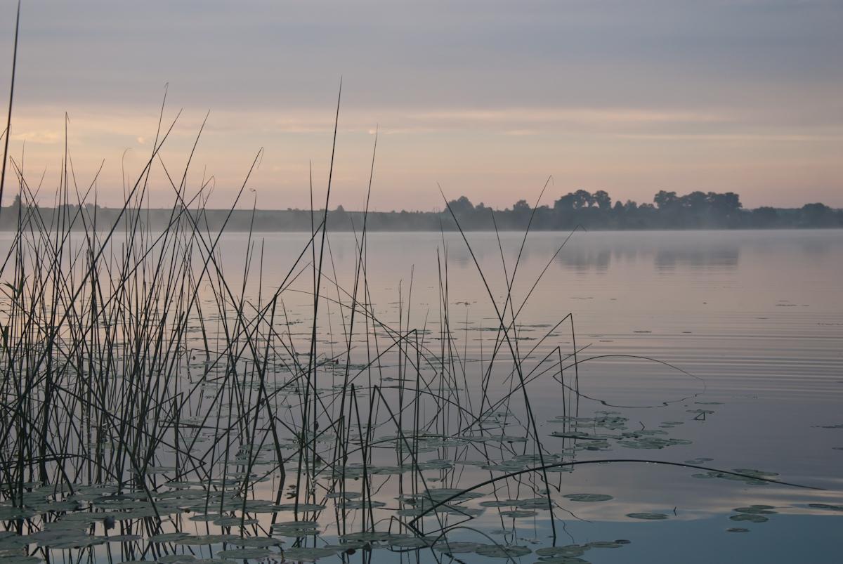 Озеро встречает новое утро. Автор фото: Вячеслав Степанов