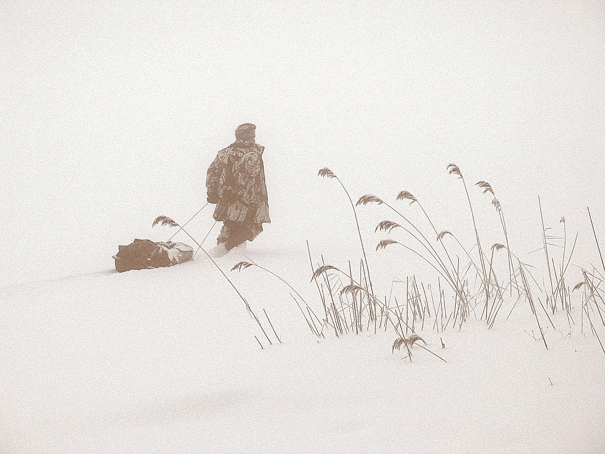 Иллюстрация к рассказу «Кукушка» Автор фото - KTR