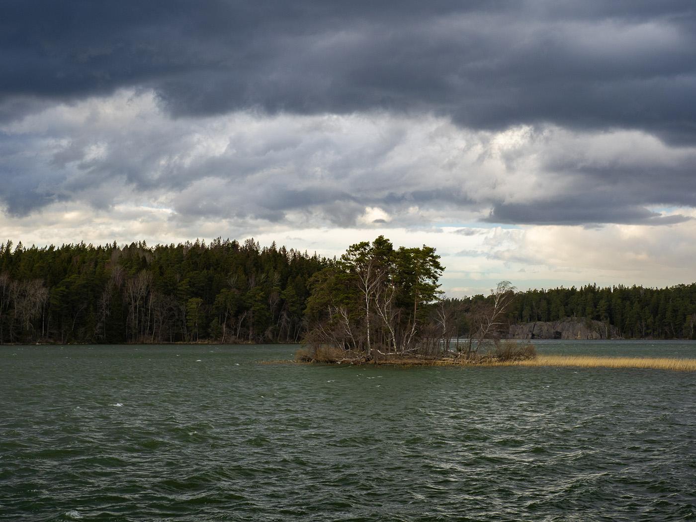 Природный парк Bornsjön (Bornsjöns naturreservat). Автор фото: Сутормина Марина