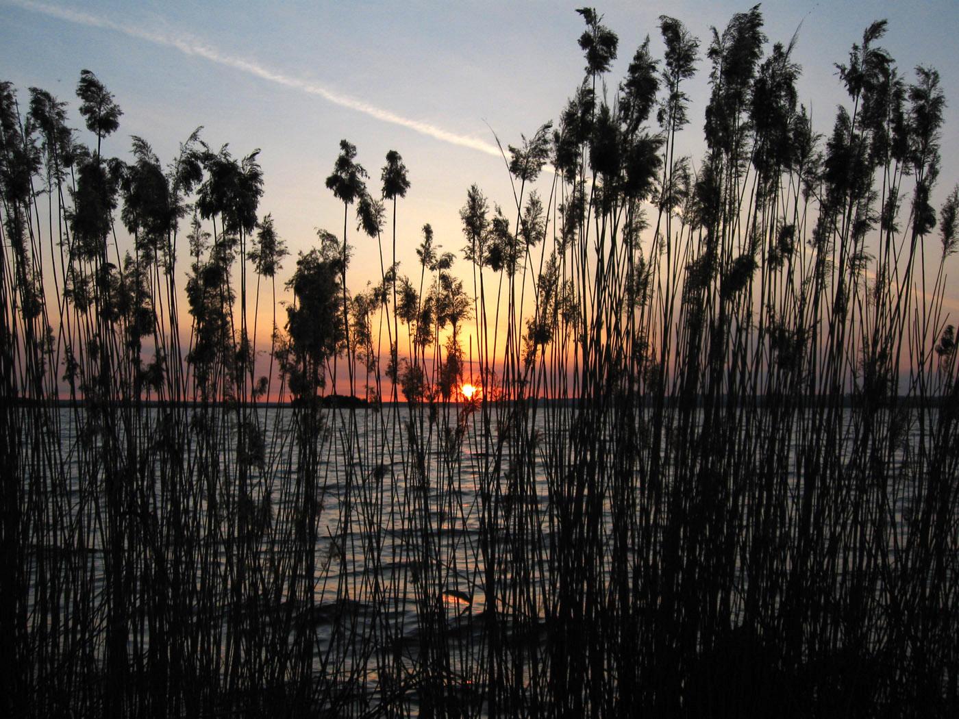 Восход.. Автор фото: Олег Селиверстов