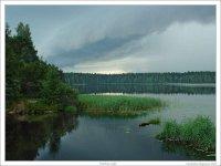 Чеполшевское-2005