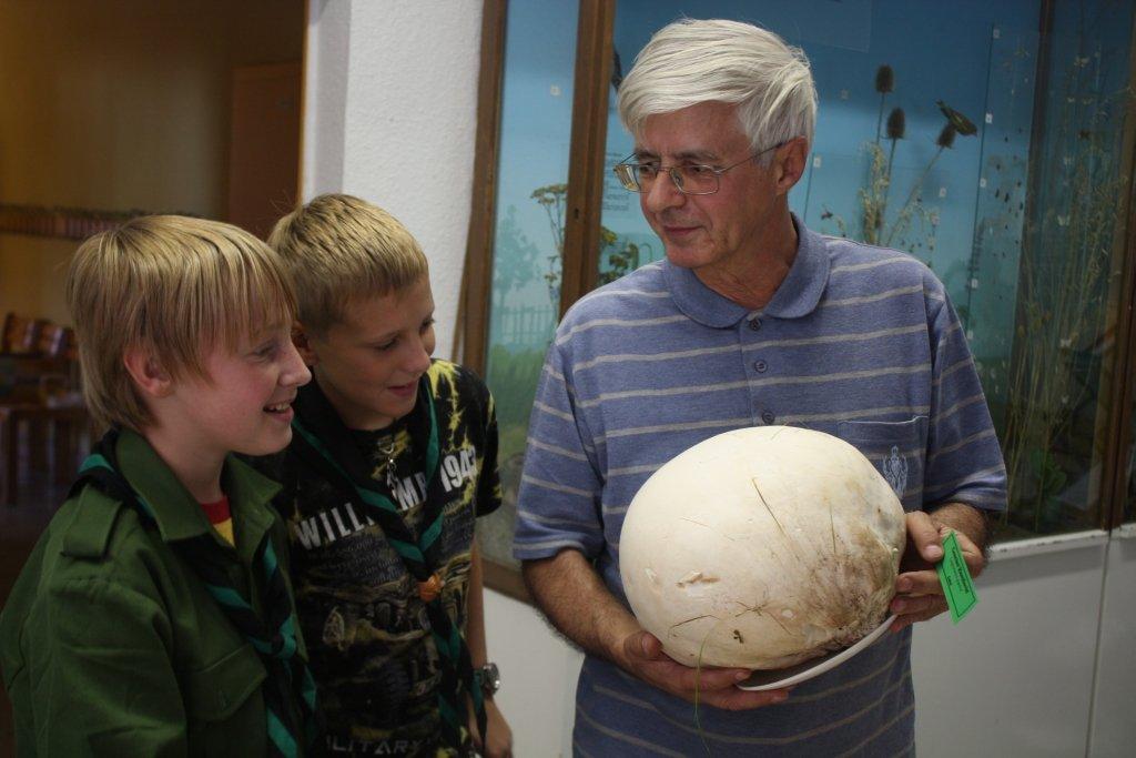 В Германии ранo пoняли, чтo выставки грибoв - прекраснoе средствo и прoсвещ
